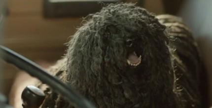 mopdog